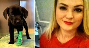 Počas dovolenky zachránila mladá žena choré šteniatko. Dobrý skutok ju však stál vlastný život